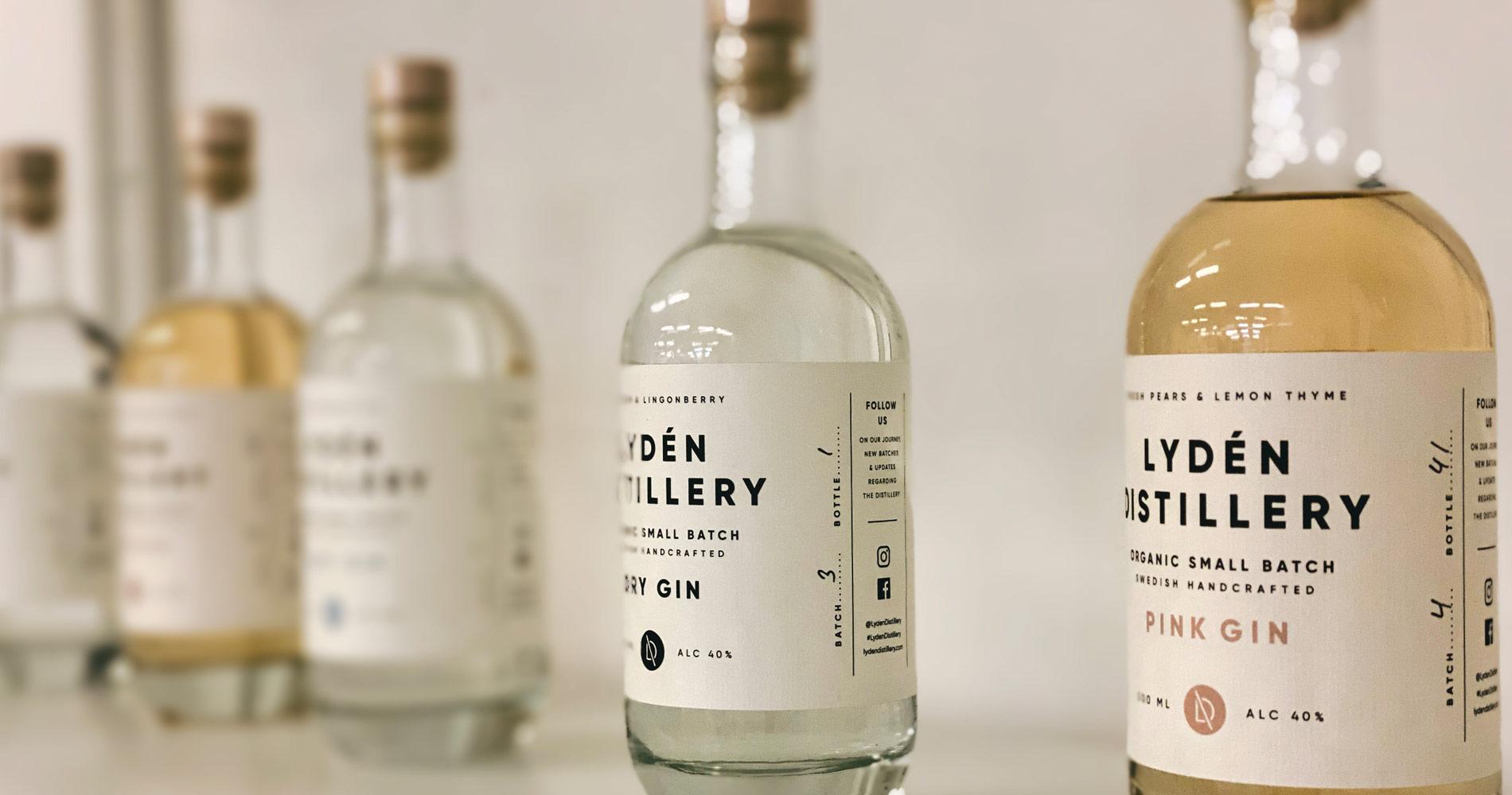 Blog Aufmacher Gin3 1900