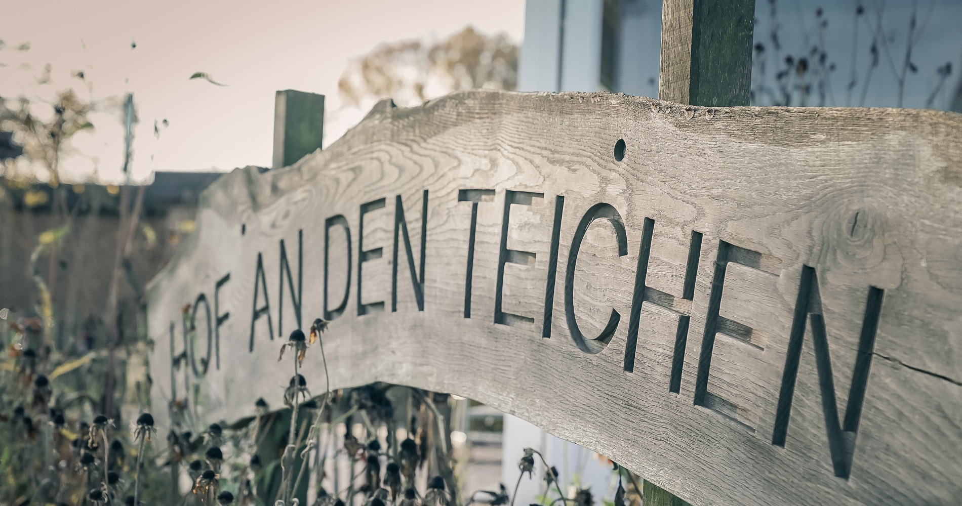 Blog Aufmacher 1900 Hof Teiche25