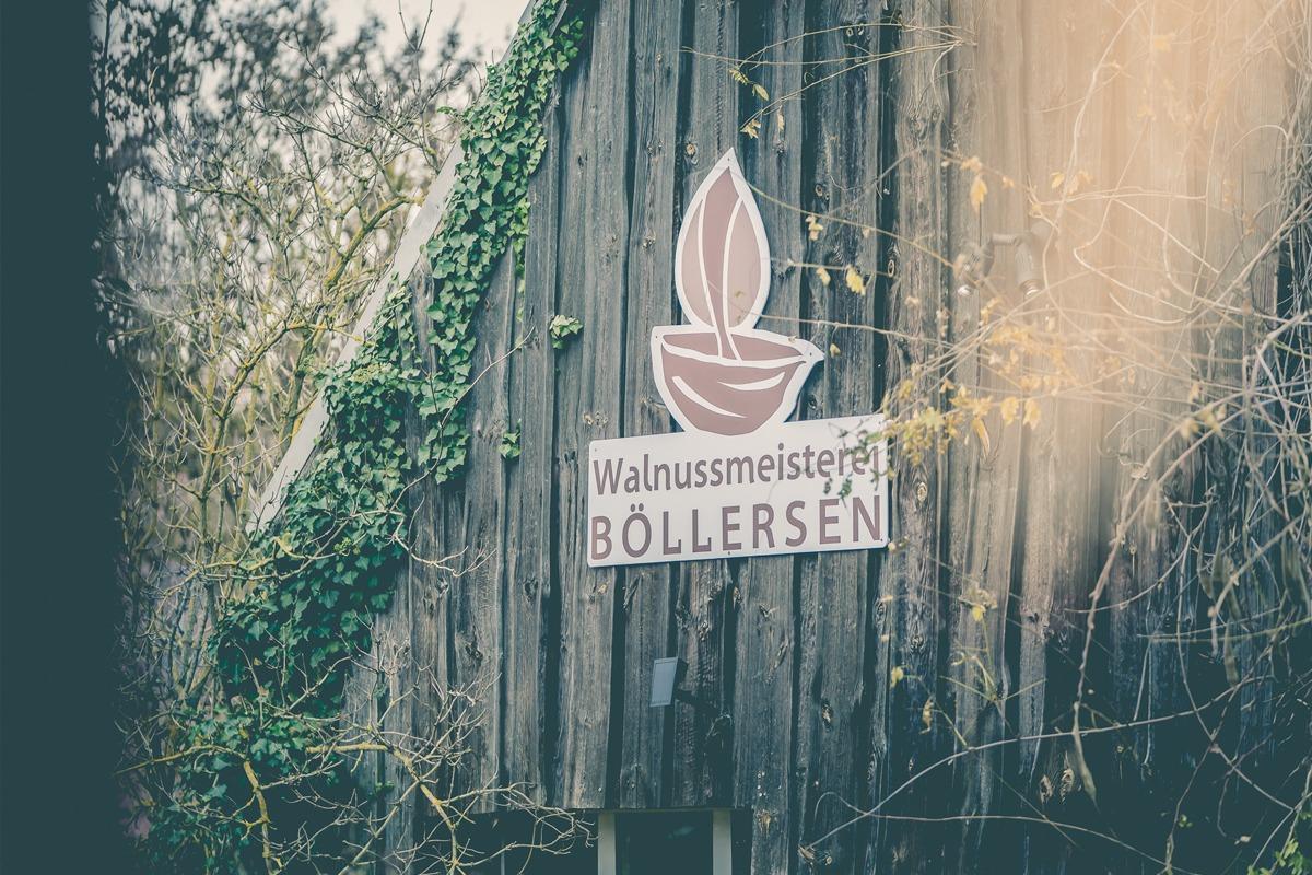 Beitragsbilder Walnuss10